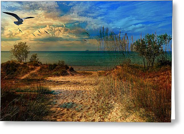 Sand Track To The Ocean At Dusk Greeting Card