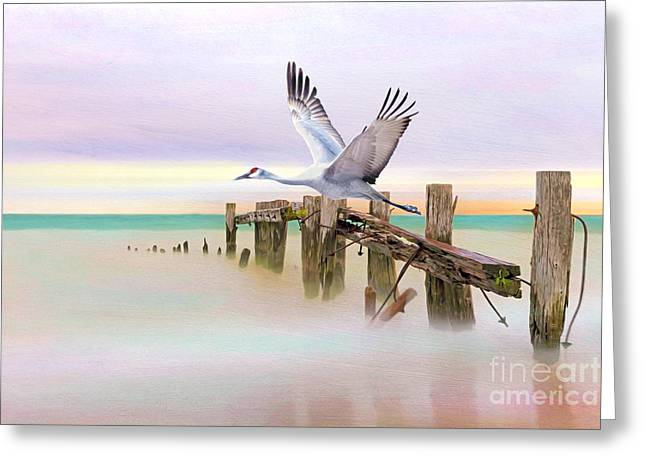 Sandhill Crane And Old Dock Greeting Card