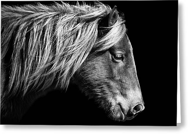 Sarah's Sweat Tea Portrait In Black And White Greeting Card
