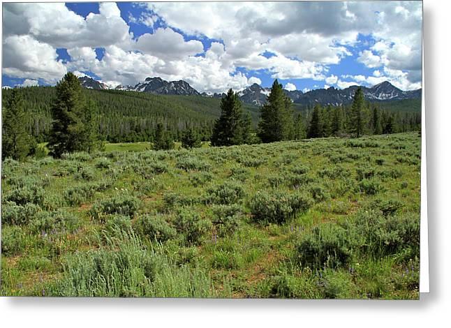 Sawtooth Range Crooked Creek Greeting Card