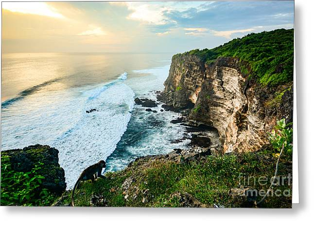Scenic Coastal Landscape Of High Cliff Greeting Card