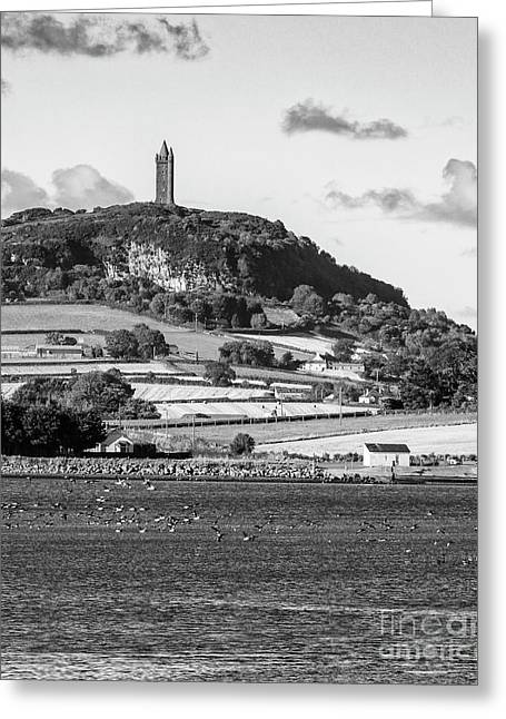 Scrabo Tower Greeting Card