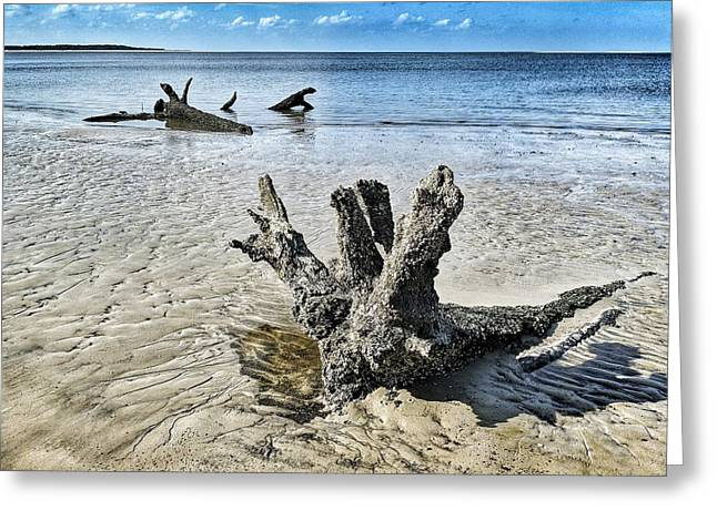 Sculpted By The Sea Greeting Card