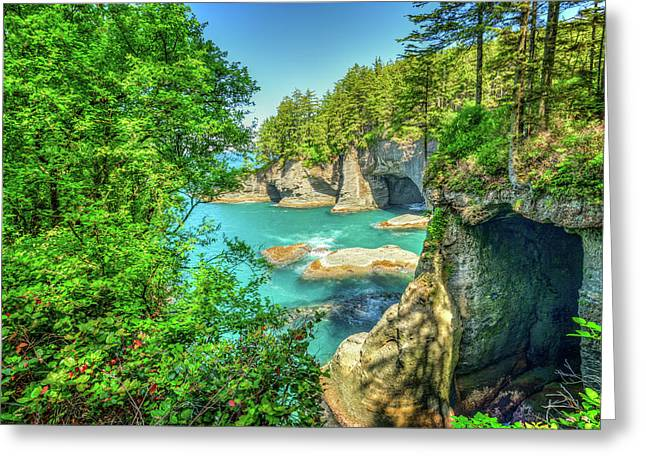 Sea Caves At Cape Flattery Greeting Card