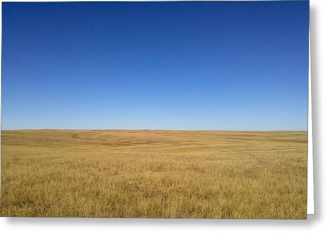 Sea Of Grass Greeting Card