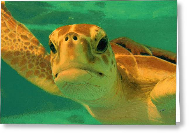 Sea Turtle Off The Mexican Coast - Dwp2086549 Greeting Card