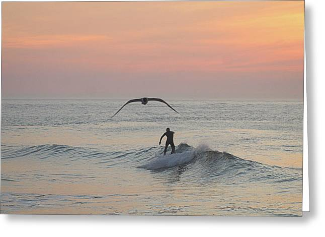 Seagull And A Surfer Greeting Card