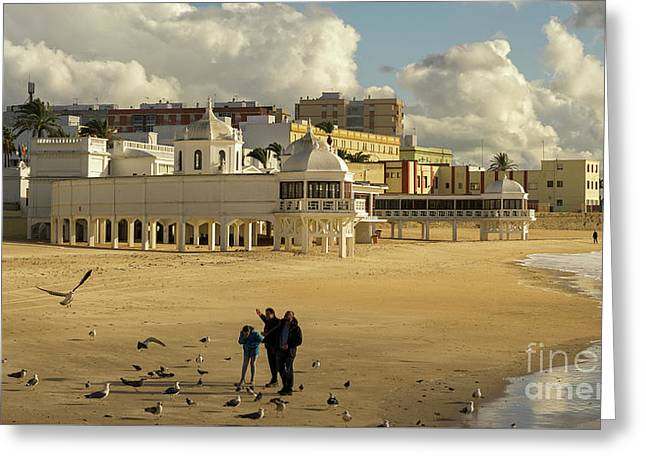 Greeting Card featuring the photograph Seagulls At Caleta Beach Cadiz Spain by Pablo Avanzini