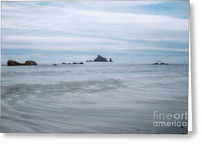 Greeting Card featuring the photograph Seastacks And Seagulls by Sharon Seaward