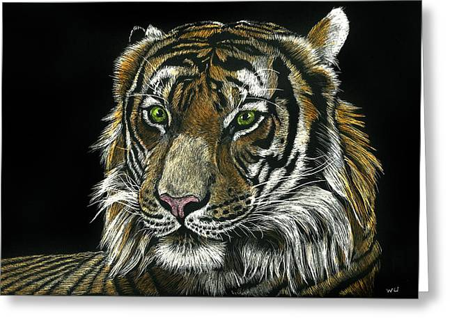 Seated Tiger Greeting Card
