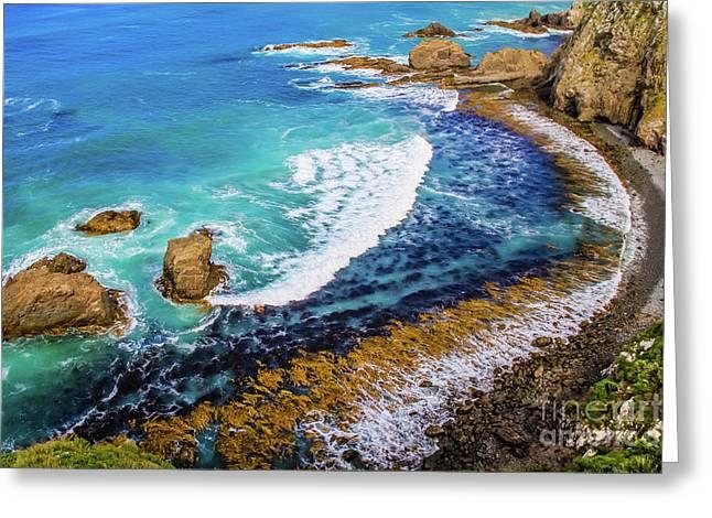 Roaring Bay At Nugget Point Greeting Card