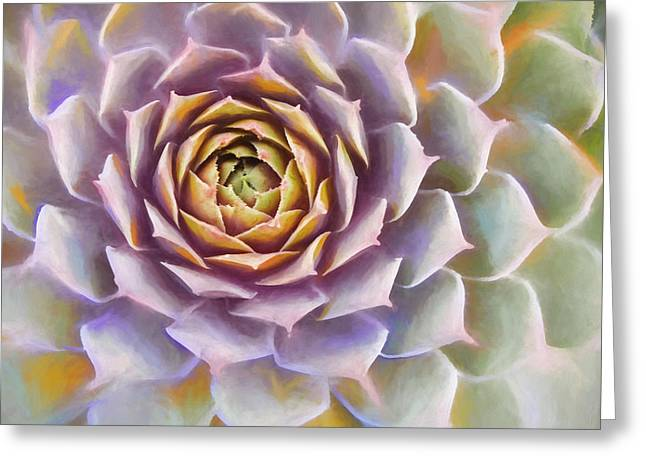 Sempervivum Succulent Painterly Look Greeting Card