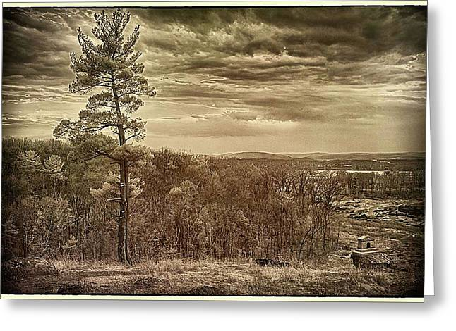 Sepia Sunset Greeting Card