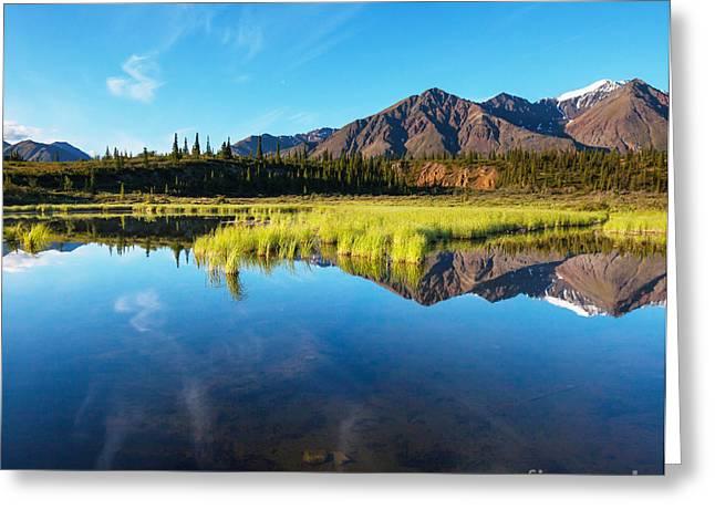 Serenity Lake In Tundra On Alaska Greeting Card