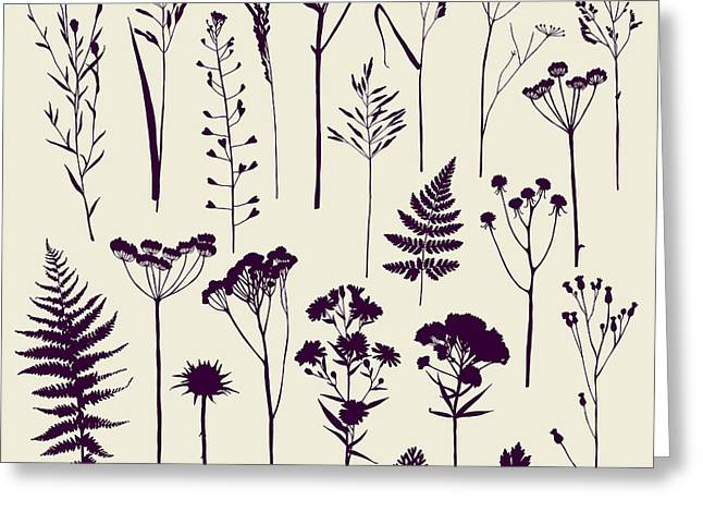 Set Of Illustrations Of Plants Greeting Card