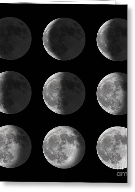 Set Of Moon Phases For New, Half, And Greeting Card