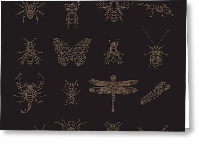 Set Of Vintage Thin Line Insects Icons Greeting Card