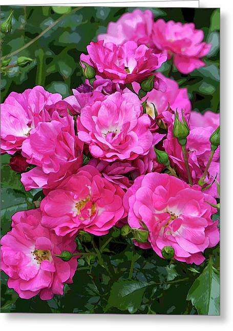 Shrub Rose Stylized Greeting Card
