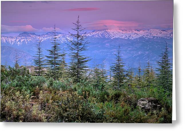 Sierra Nevada At Sunset. Purple Clouds Greeting Card