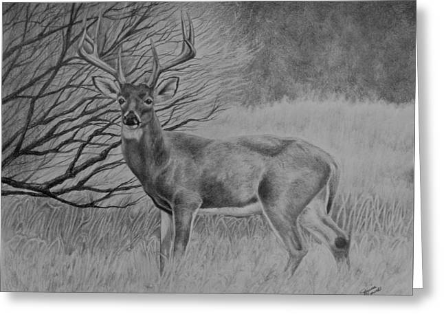 Silent Majesty Greeting Card
