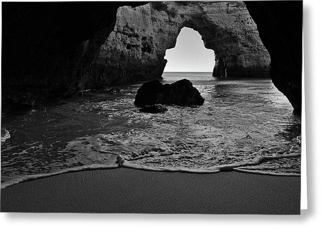 Silky Waves In Monochrome Greeting Card