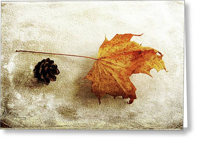 Greeting Card featuring the photograph Simple And Beautiful by Randi Grace Nilsberg
