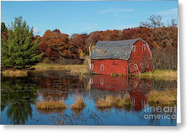 Sinking Red Barn In Fall Greeting Card