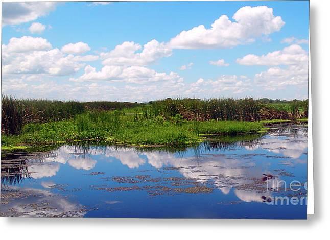 Skyscape Reflections Blue Cypress Marsh Near Vero Beach Florida C6 Greeting Card