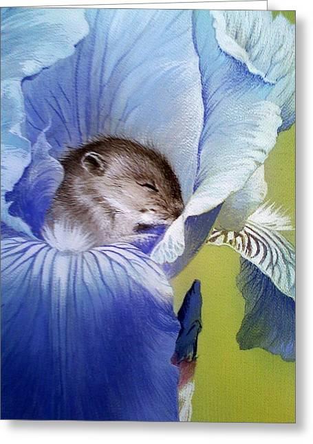 Sleepy Baby Mouse In Iris Greeting Card