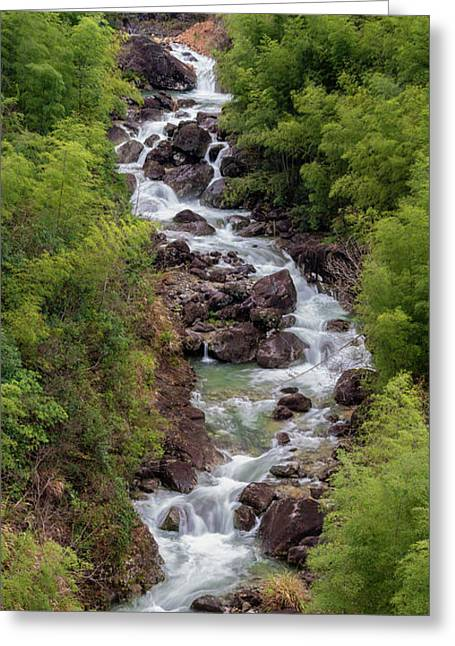 Small Cascade 1x2 Vertical Greeting Card