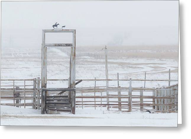 Greeting Card featuring the photograph Snow And Corral 01 by Rob Graham