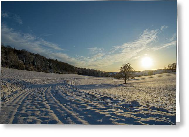 Snow And Sunset Greeting Card