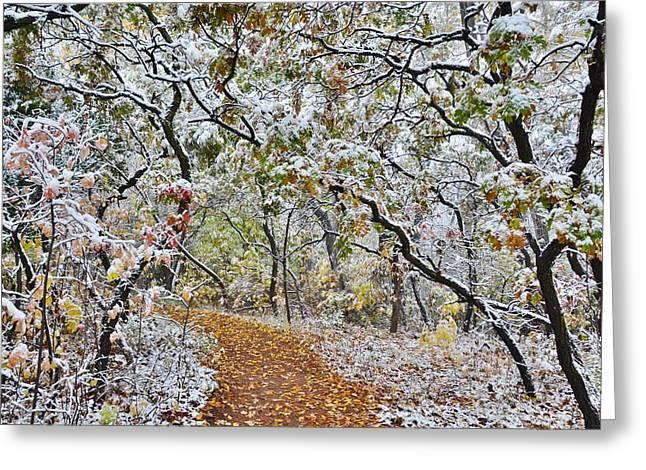 Snow Greets Autumn Greeting Card