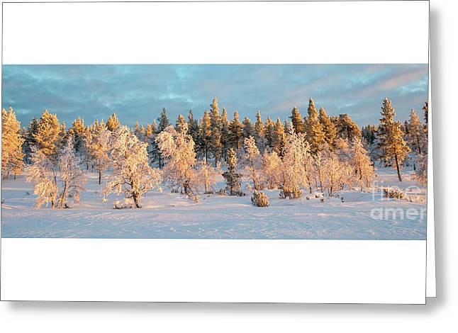 Snowy Trees Winter Panorama Greeting Card