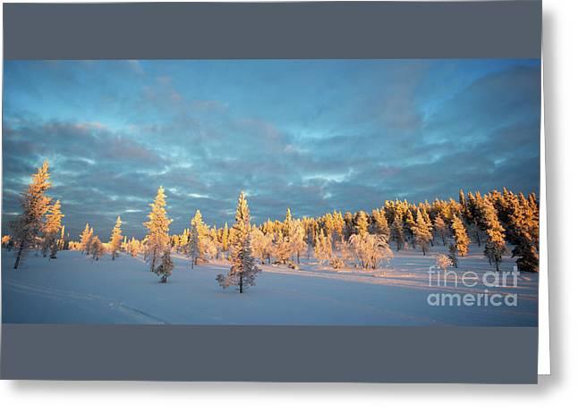 Snowy Winter Scene Greeting Card