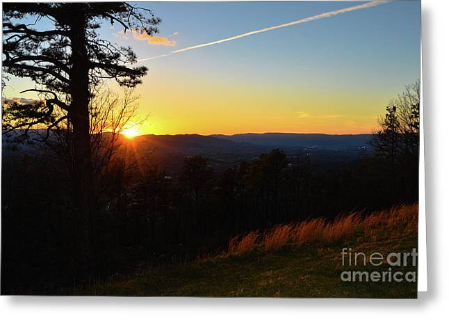 Solace And Pine Greeting Card