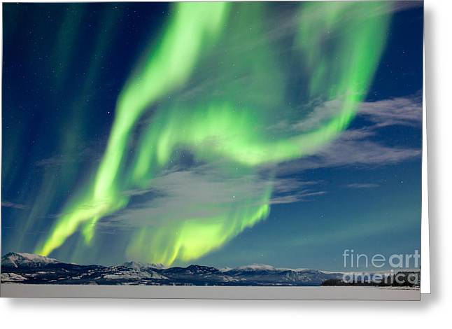 Spectacular Northern Lights Or Aurora Greeting Card