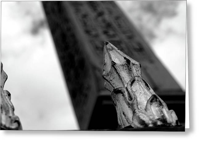 Greeting Card featuring the photograph Spike by Edward Lee