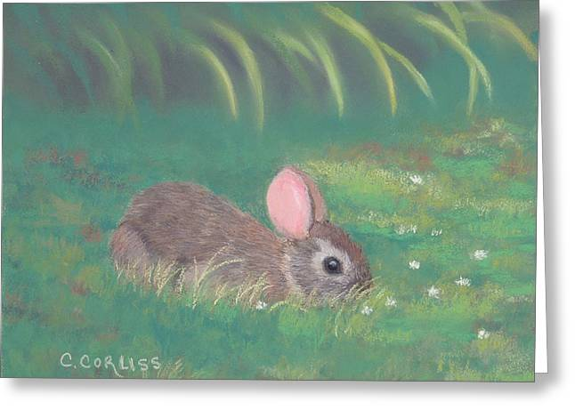 Spring Clover Greeting Card