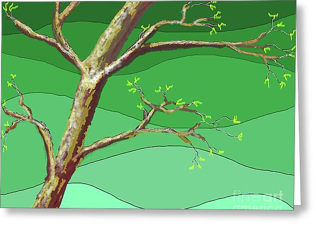 Spring Errupts In Green Greeting Card