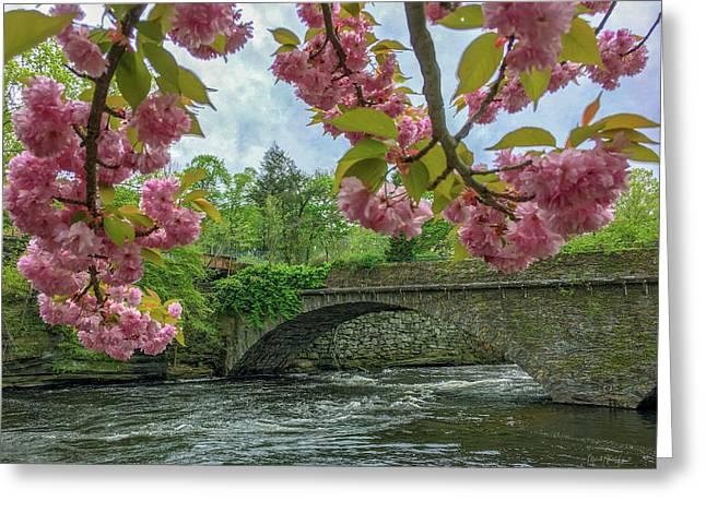 Spring Garden On The Bridge  Greeting Card