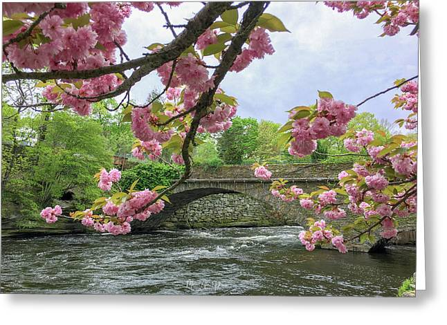 Spring Time In Windham  Greeting Card