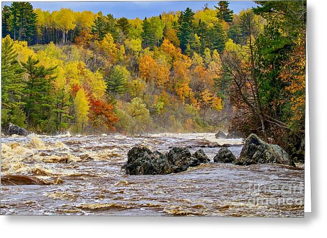 St. Louis River At Jay Cooke Greeting Card