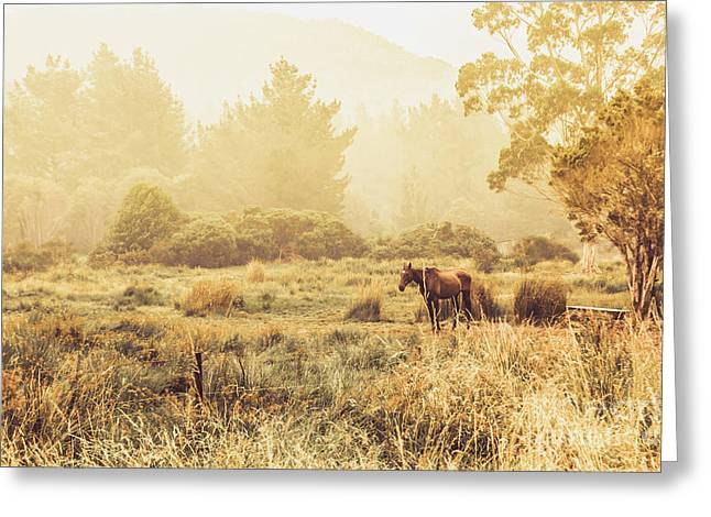 Stallion Homestead Greeting Card