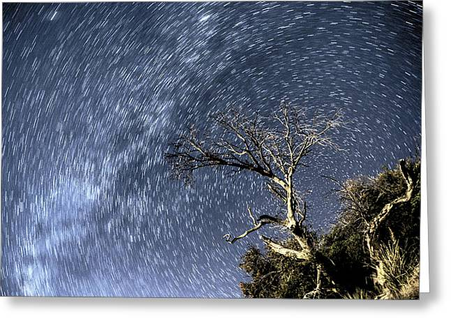 Star Trail Wonder Greeting Card