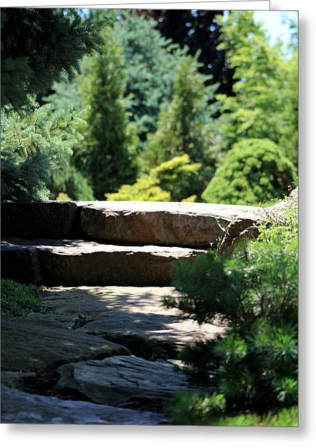 Stone Stairs In Chicago Botanical Gardens Greeting Card
