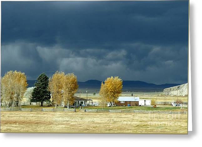 Greeting Card featuring the photograph Storm Brewing by Rosanne Licciardi