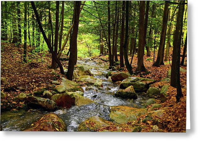 Greeting Card featuring the photograph Stream Rages Horizontal Format by Raymond Salani III