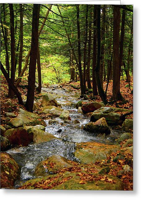 Greeting Card featuring the photograph Stream Rages Vertical Format by Raymond Salani III