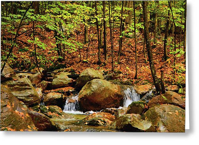 Greeting Card featuring the photograph Stream Rages In Ma by Raymond Salani III